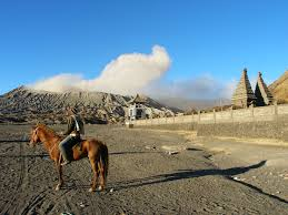 images bromo